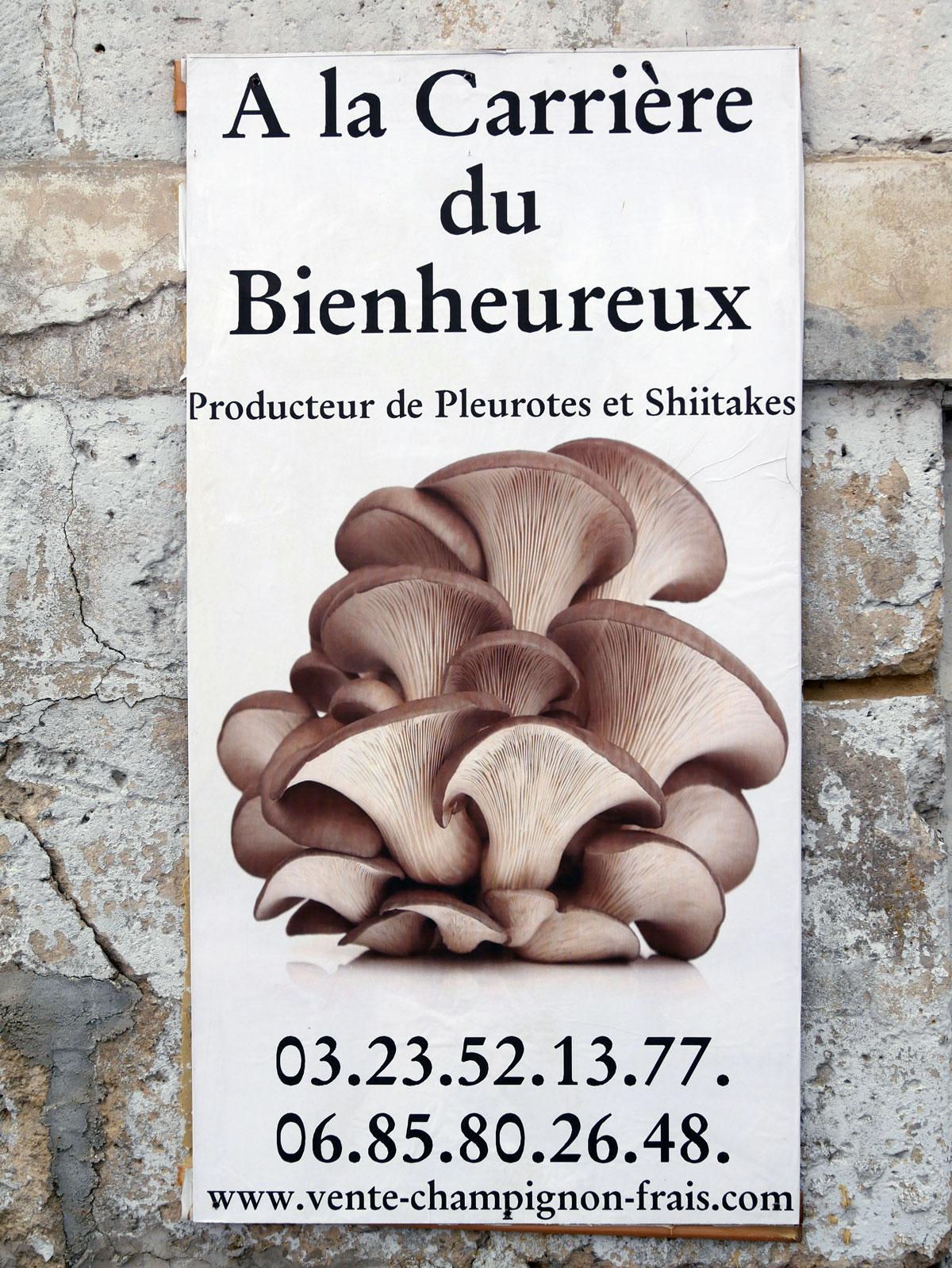 A-la-carrière-du-bienheureux-achat-vente-champignons-frais-bio